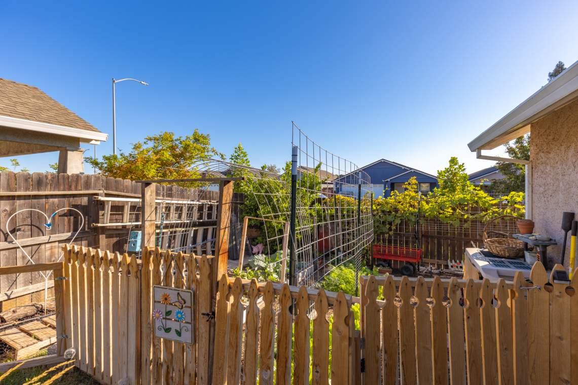 17-Backyard-garden-area-_2767-Swallowtail-Way